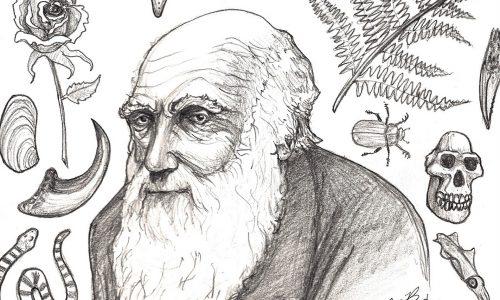 Charles Darwin e la teoria della selezione naturale Scienze per le classi 3^ e 4^