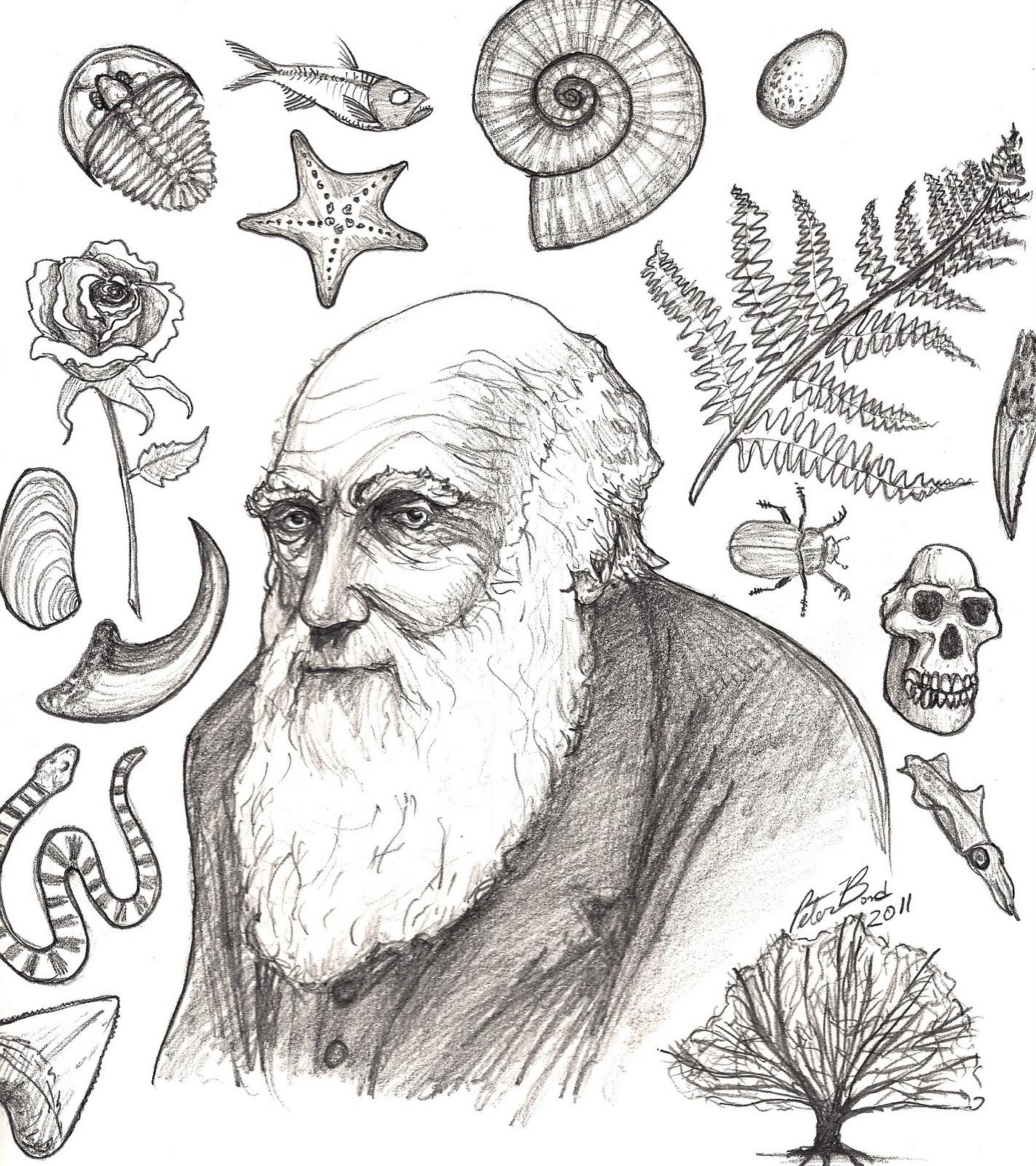 Charles Darwin scuola primaria scienze