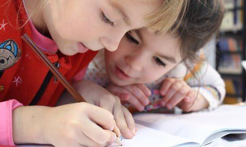 Calano gli studenti per il prossimo anno scolastico: meno 23 mila alunni alla scuola primaria e meno 20 mila alle medie e alle superiori.